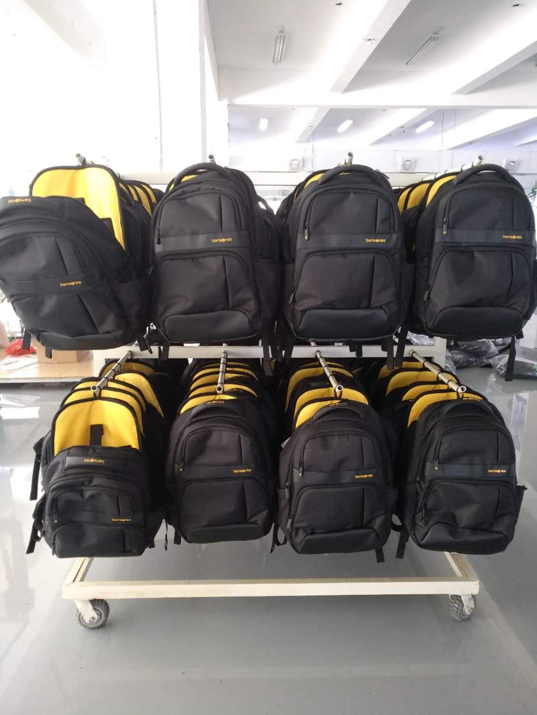 Samsnoite backpack.jpg